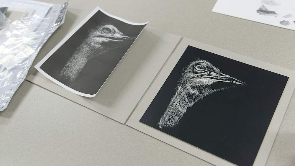 customer artwork of the head of an ostrich